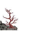 landscape a curved tree without leaves on a rock vector image