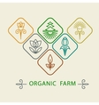 Logo design template agriculture and organic farm vector image vector image