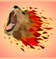 low poly colorful lion background vector image vector image