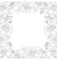 rose and iris flower outline border vector image vector image