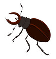 the horned beetle drawing by vector image vector image