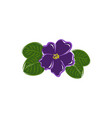 african violet pixel perfect blooming