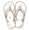 engraving of flip-flops vector image