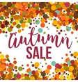 Fall Sale promo label Autumnal confetti template vector image vector image