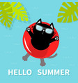 hello summer black cat floating on red air pool vector image vector image
