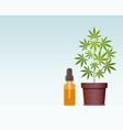 marijuana plant and dropper with cbd oil cannabis vector image vector image