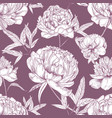 natural seamless pattern with tender peony flowers vector image vector image
