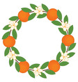 Orange Wreath vector image vector image