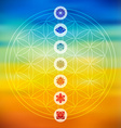 Sacred geometry with chakra icons colorful vector image vector image