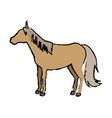 sorrel horse with white legs flat design vector image vector image