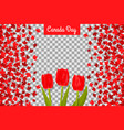 canada day background with maple leafs and tulips vector image vector image