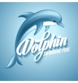 Dolphin Swimming pool sign template vector image vector image