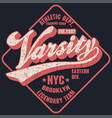 new york varsity sport wear typography emblem t vector image vector image