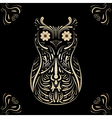 owl on black background vector image