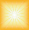 square summer sun light burst vector image vector image