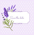 vintage floral frame with lavender in provence vector image vector image