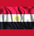 flag egypt rectangular icon waving effect vector image vector image