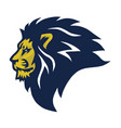 lion head logo sports esport mascot design vector image vector image