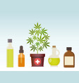 marijuana plant and cannabis oil medical vector image vector image