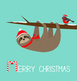merry christmas sloth hanging on rowan rowanberry vector image vector image