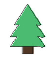 pine tree icon vector image