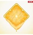 Square slice of orange with fresh juice vector image