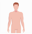 thyroid on man body silhouette medical vector image vector image