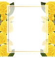 yellow rose flower banner card border vector image