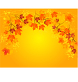 Autumn in gold vector image