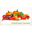 Background With Organic Fresh Vegetables Healthy vector image vector image