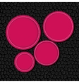 Circle banner background vector image vector image