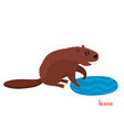 cute beaver in cartoon style isolated on vector image