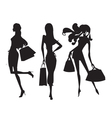 Fashion shopping girls vector | Price: 1 Credit (USD $1)