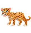happy leopard cartoon isolated on white background vector image vector image