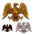 heraldic golden egale with wings sketch vector image vector image