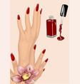 manicure vector image vector image