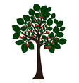 Tree with green leaves and cherries vector image vector image