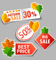 autumn sale stickers set vector image