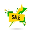 Colorful advertising flashed sale banner vector image vector image
