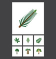 flat icon natural set of wood spruce leaves vector image vector image