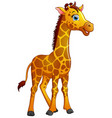 happy giraffe cartoon isolated on white background vector image vector image