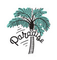 paradise inscription written with cursive vector image vector image