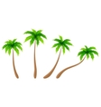 set palm trees vector image