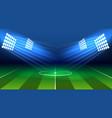 soccer lamp stadium vector image