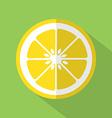 Flat Design Lemon Icon vector image