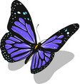 a beautiful colorful butterfly vector image