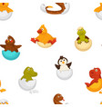 animals born from eggs eggshells and reptiles vector image vector image