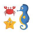 sea life design vector image vector image