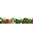 tropical flowers and palm leaf isolated white vector image