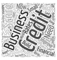 Build Up Your Business Credit Word Cloud Concept vector image vector image